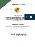 TESIS DOCTORAL - PROFESORA MARIA ANGELICA CASTILLO.pdf