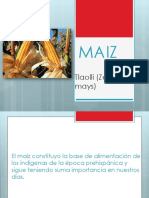 plantasmaizcondimentoscolorantes-121027175653-phpapp02