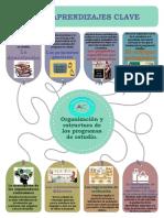 Organizacion y estructura de los programas de estudio