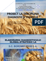Elaborarea diagnosticului  global-strategic la S.C. Boromir Prod S.A. (1)