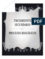 2-flores-comp.pdf