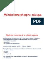 meta phosphocalcique FINI