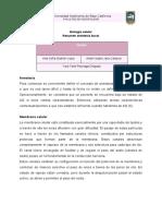 anestesia bucal.pdf