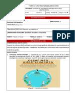02_solucionesamortiguadoras 2.pdf