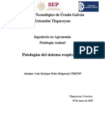 Patologías del sistema respiratorio.docx