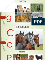 INTERACTIVO ANIMALES