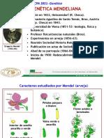 Genetica Mendeliana-CPA3051[3]-2020 (1).ppt
