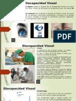 La Discapacidad Visual.pptx