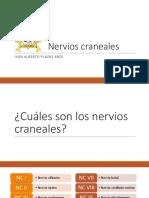 Clase 4 - Nervios craneales.pptx