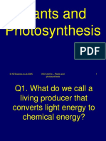 9c-photosynthesis-science-quiz 2.ppt