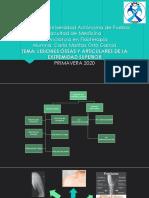 LESIONES-OSEAS-Y-ARTICULARES-DE-MIEMBRO-SUPERIOR.pptx