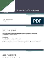 CLASE 3 IDENTIFICACIÓN DE OBSTRUCCIÓN INTESTINAL E ILEO