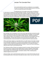 Eat Hemp And Appreciate The Cannabis Plant