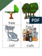 memory card game singular and plural