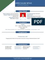 CV LUTFI.docx