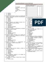 Evaluación- Métodos y aulas virtuales