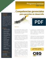 Competencias gerenciales para gerentes en desarrollo (programa modular)