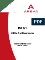 P891 Technical Manual