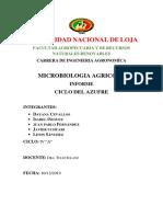 Grupo 1 Imforme Ciclo del Azufre.docx