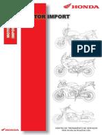 240231693-Manual-Servico-CB-1300.pdf