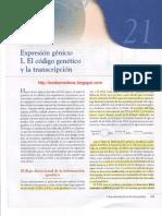 Capitulo 21, Expresión Génica I. El código génetico y la transcripción.