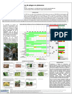 Lopez-Cepero Piedra Buena Phytoma 2013 PDF