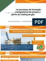 11.00-João-Carlos.pdf