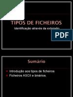 Tipos de ficheiros