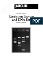 Restriction Enzyme Dna Kit