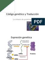 Neurofisiologia codigo-traduccion (1).pdf