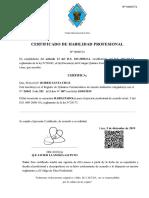 Certificado de Habilidad 09