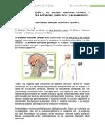 Sistema Nervioso Central y Perifiercio..pdf