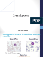 Granulopoese 2019.2.pdf
