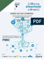 01_pibic - Copiar.pdf