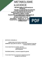 Dismetabolisme glucidice