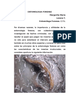 ENTOMOLOGIA FORENSE MARGARITA LOZANO.doc