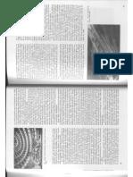 Historia Critica de la Arquitectura Moderna - Frampton Kenneth-1-21_020.pdf