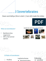 Chapter 33 Intro to Inverts.pdf