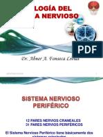 3 FISIOLOGÍA DEL SISTEMA NERVIOSO PERIFÉRICO 2
