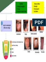 semiologia da língua.pptx