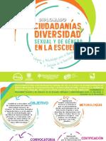 Folleto Diplomado Diversidad__Univalle y Secretaria de Educacion