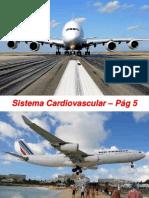 2 aula Sistema Cardiovascular