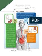 FT_doenças_sistema_digestivo.docx
