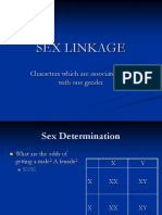 sex_linkage (ppt).ppt