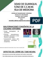 Defectos y Anomalias Congenitas de Columna Vertebral