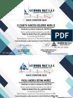 certificado de geswork febrero de 2019 popayan cauca toma de muestras