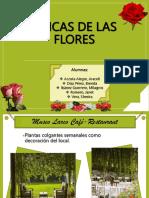 Las Chicas de las flores.pptx
