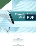 Proyecto Opcion de Grado I