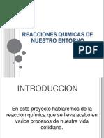 DIAPOSITIVAS DE LAS REACCIONES QUIMICAS DEL ENTORNO