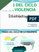 fases del ciclo de la violencia 6.2 segunda clase.ppt